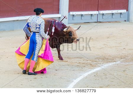 Corrida. Fighting in a typical Spanish Bullfight