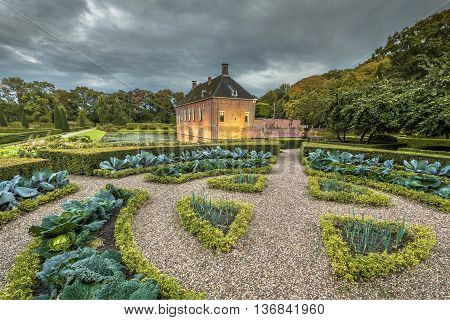 Verhildersum Creative Cabbage Garden With Vegetables