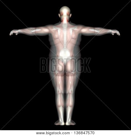 Concept or conceptual 3D fat overweight vs slim fit diet with muscles young man isolated on black background metaphor weight loss, body, fitness, fatness, obesity, health, healthy, male, dieting shape