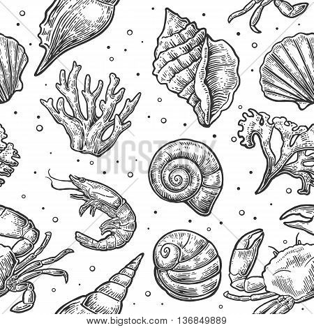 Seamless pattern sea shell coral crab and shrimp. Vector engraving vintage illustrations. Isolated on white background.