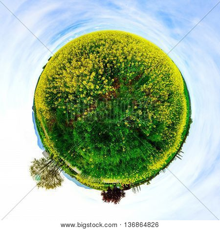 Little Planet View Of Green And Yellow Flowering Field