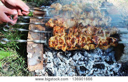 Kebabs on skewers roasting on the coals.