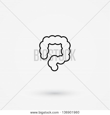 Vector colon simple icon. Human internal abdomen organs