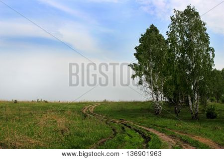 A dirt road in a field on a summer day