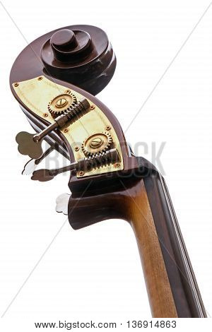 part of a double bass musical instrument of the violin family with neck head tuning pegs and scroll view from below isolated on a white background
