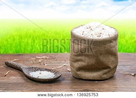 Rice in small sack on fields and blue sky for background