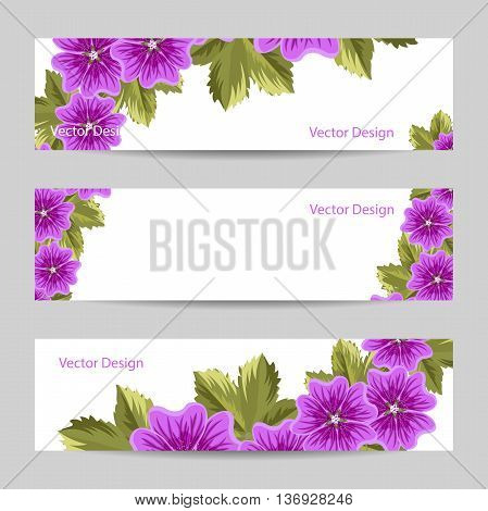 Set of horizontal banners. Beautiful mallow flowers with leaves isolated on white background.