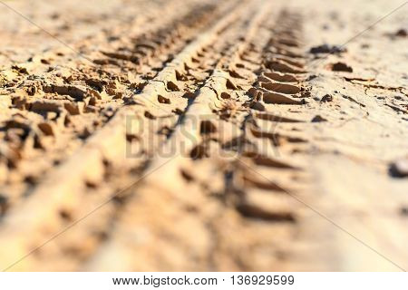 Wheel tracks in the dirt. Selective focus of a skid mark.