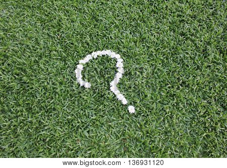 Question mark made from daisy flowers on green grass background, spring time.