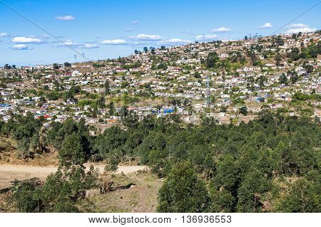 Trees And Crowded Township Housing Settlement In Marianne Hill