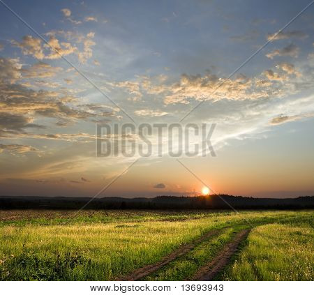 Sunset Above Field