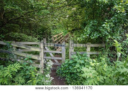 Woodland Trail at Weldon, close to Weldon Bridge in Northumberland, is a riverside woodland walk through this gate and footbridge