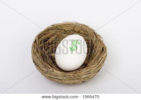 Nest Egg Dollars