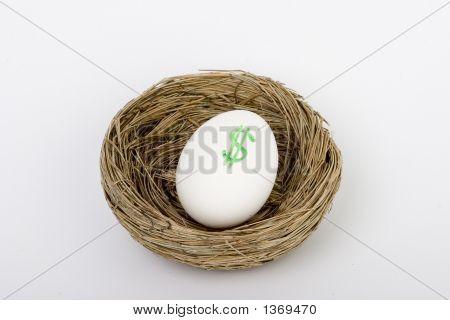 Nest Egg Dollars