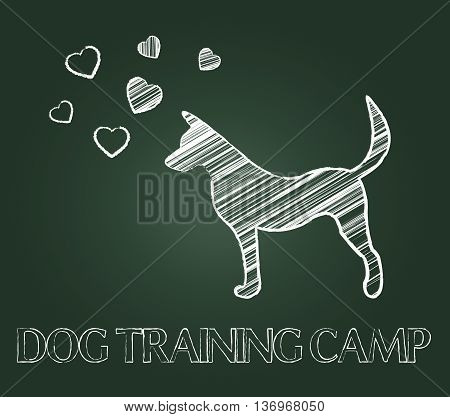 Dog Training Camp Shows Instruction Taught And Canine