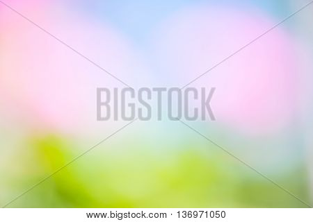 Blurry green grass, blue sky and pink flowers