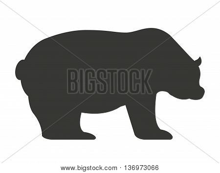 stock bear isolated icon design, vector illustration  graphic
