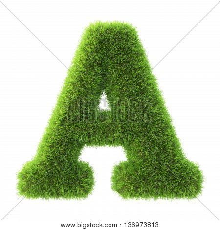 Alphabet made from green grass. isolated on white. 3D illustration.a
