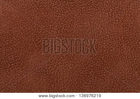 Background of dark brown fabric flock decorated with a coat of the animal. Lint-free cloth suede.