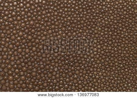 Genuine brown stingray skin closeup. Super macro Leather texture background.