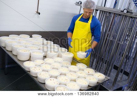 Handsome cheesemaker is making curd cheese in his workshop.