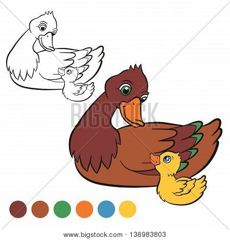 Coloring page. Color me: duck. Kind duck and little cute duckling swim on the pond.