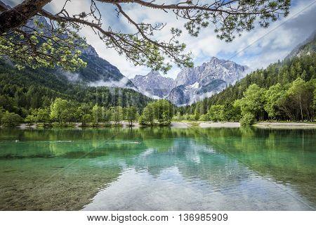 Zelenci pond near Kranjska Gora in Triglav National Park