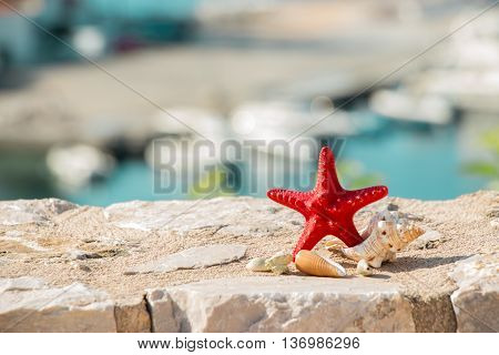 Right starfish and seashells left empty space on the background of the sea sea berth. Red starfish and seashells. Horizontal. Daylight.