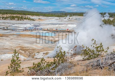 People watching hot springs, geysers and steam in Norris Geyser Basin in Yellowstone National Park