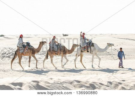 Bedouin Leading Tourist Group On Camels