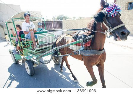 Carriage In Tozeur