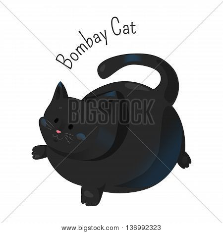 Bombay cat isolated. Burmese type, but with a sleek, tight black coat. Short haired breed. Furry, carnivorous mammal. Part of series of cartoon funny kitten species. Child fun pattern icon. Vector