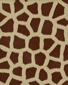 giraffe medium spots short fur textured background poster