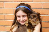 Beautiful girl cuddles with pet chihuahua . poster