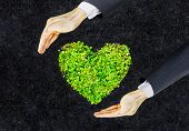 hands of businessman holding green heart shaped tree / business with environmental concern / csr / Go green / Corporate Social Responsibility / Sustainable development poster