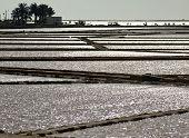 Salt evaporation ponds in Stagnone lagoon, Marsala, Sicily poster