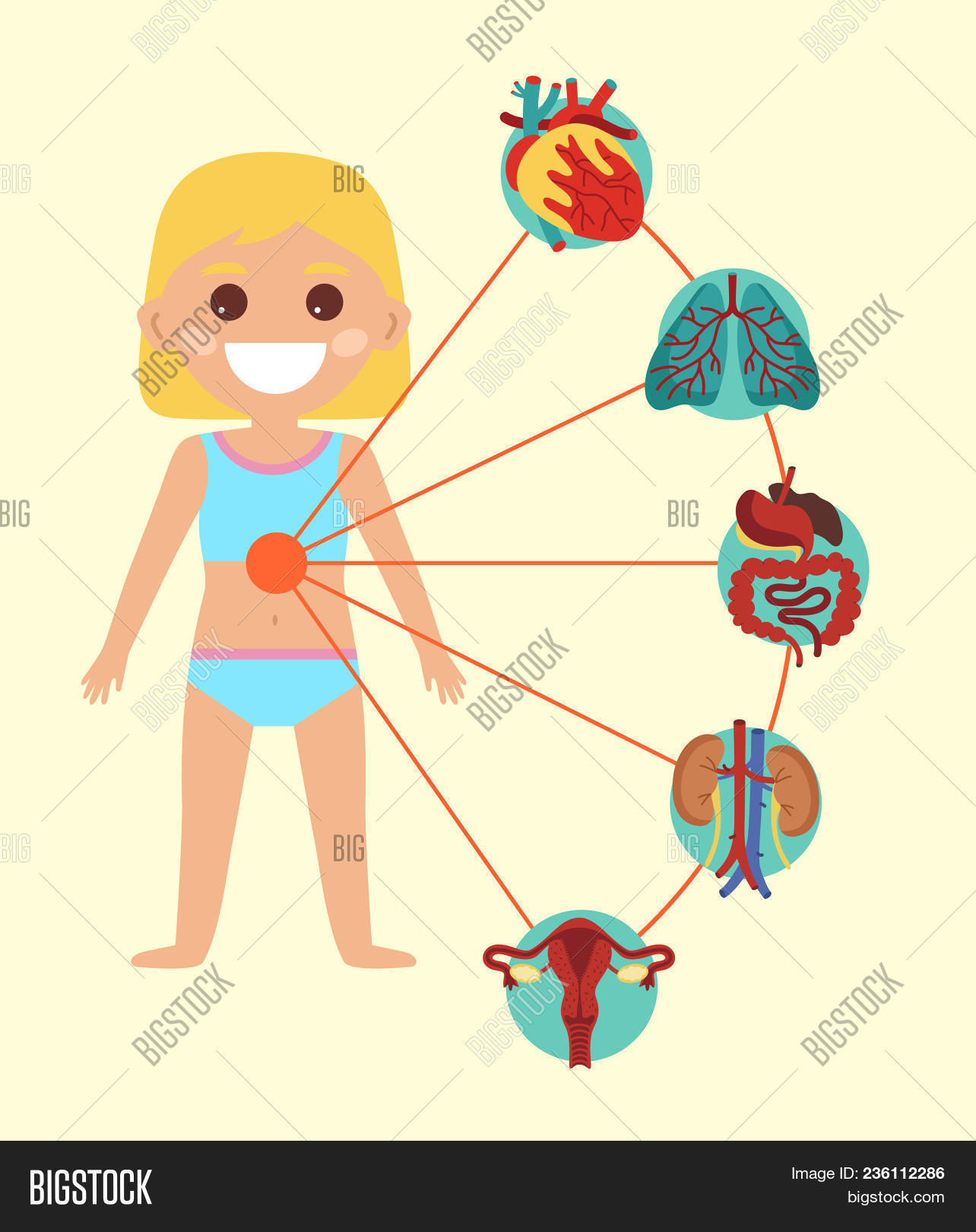 Female Health Medical Image & Photo (Free Trial)   Bigstock