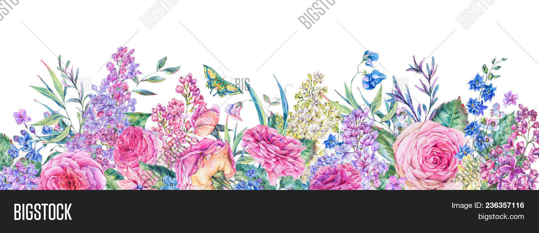 Lilac Vintage Flower Postcard Botanical Art for Framing