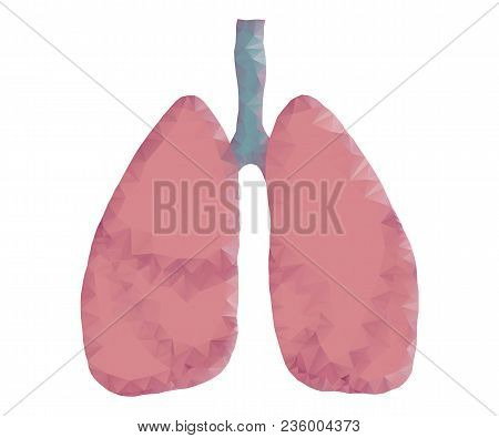 Human Lungs In Polygonal Low Poly With Triangles Style. Lungs Of Healthy Person. Abstract Technology