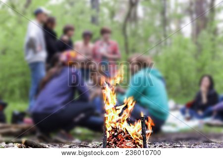 Hike, Picnic, Bonfire. A Company Of Young People On A Hike Or On A Picnic In The Forest Near The Cam