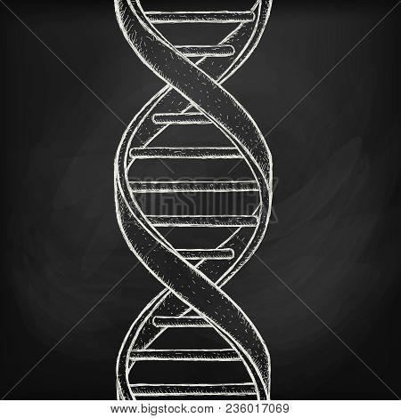 Dna Helix Symbol On Chalk Board Background. Gene Icon. Handdraw Vector Illustration.