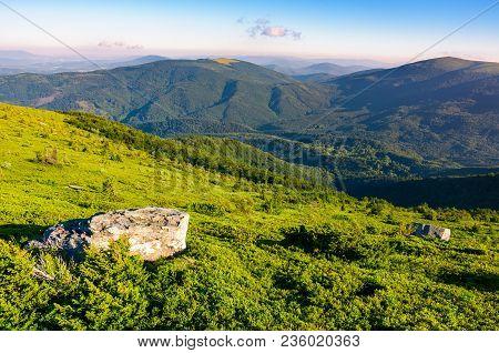 Grassy Hillside In Mountains. Lovely Summer Landscape Of Carpathian Mountains