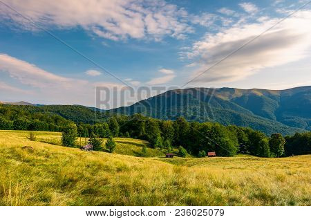 Meadow Near The Forest At The Foot Of The Mountain. Wooden Sheds In Tall Grass. Beautiful Summer Eve
