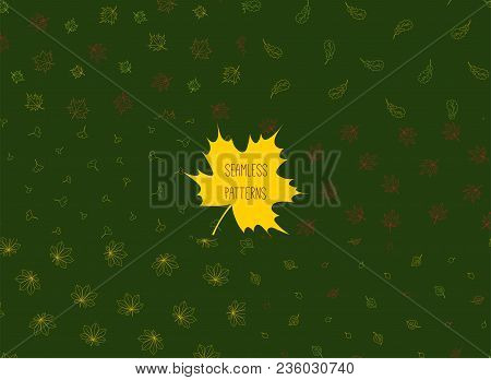 Set Of Hand Drawn Seamless Vector Patterns With Autumn Leaves From Different Trees Oak, Chestnut, Bi