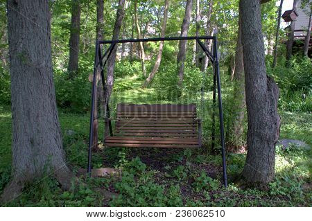 Wooden Swing With A Black Metal Frame In A Woods Forest In Summer Surrounded By Green Vegetation