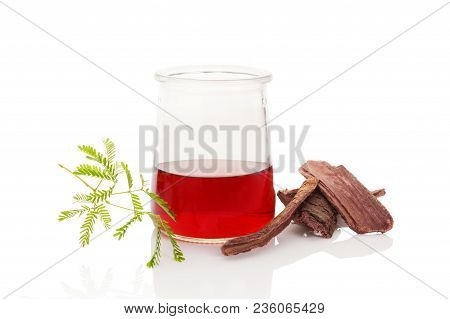 Psychedelic Plants. Mimosa Hostilis Root Bark And Plant And Ayahuasca Brew Isolated On White.