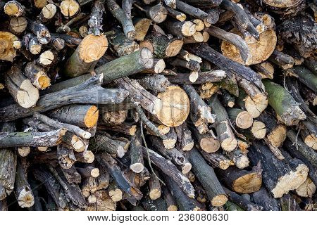 Texture Of Firewood. Firewood For Burning In  Fireplace In  Cold Season