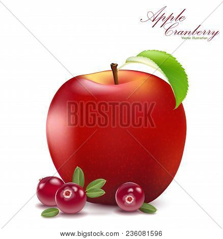 Fresh Apple And Cranberry Design Elements Isolated On White Background. Berries Set With Leaves. App