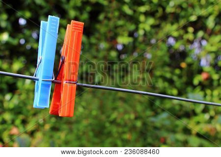 Blue And Red Clothes Pin On A Washing Line In A Garden