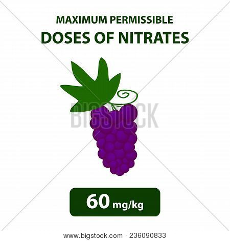 The Maximum Allowable Dose Of Nitrates In Grapes. Nitrates In Vegetables And Fruits. Infographics. V